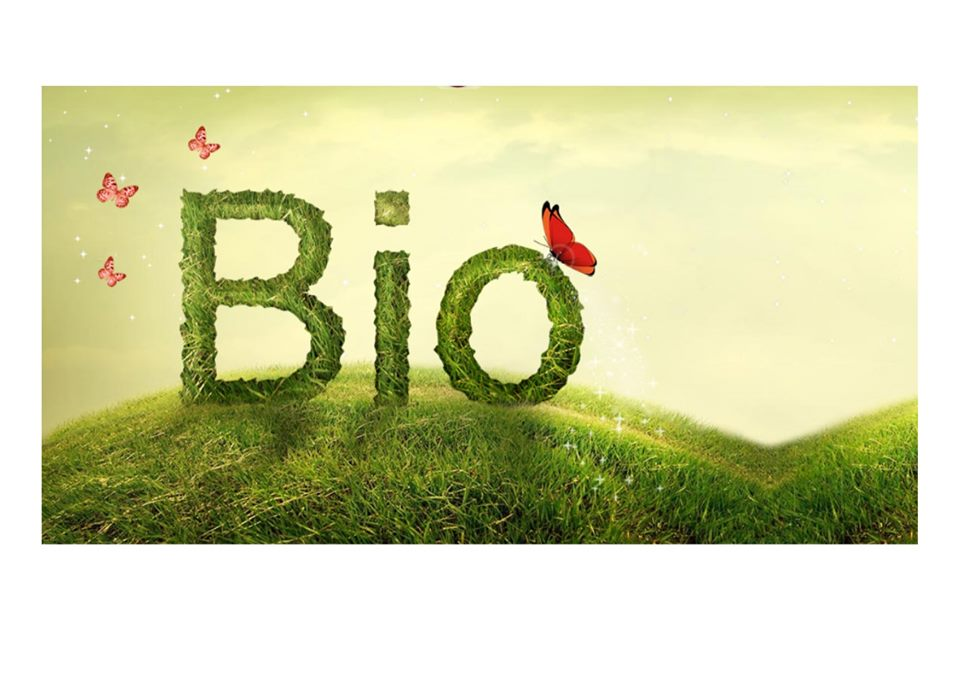 5 buoni motivi per scegliere un cosmetico Bio
